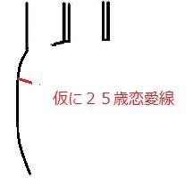 仮に25歳恋愛線.jpg