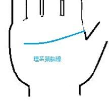理系頭脳線.jpg