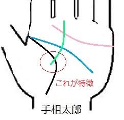 線が少なくシンプルな手相の意味.jpg